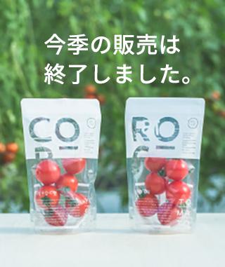 COROCO 6パックセット